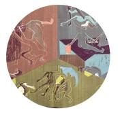 Aporia grafica